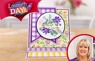 Launch Day - 7th September - NEW Interchangeable Stamps & Stencils