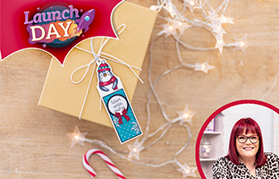Launch Day - 10th August - NEW Christmas Front & Back Character Gift Tags