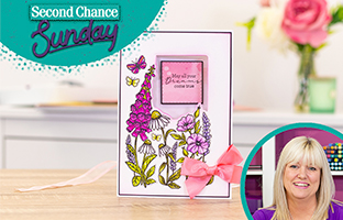 Second Chance Sunday - 11th April