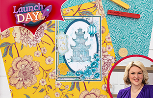 Launch Day - 17th May - NEW Nature's Garden Chinoiserie