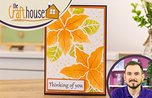 The Craft House - Double Sided Create-a-Card dies with Debby - Saturday 25th July