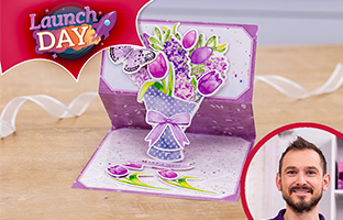Launch Day - 29th May - NEW Reversed Easels Card Kit