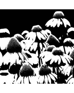 Imagination Crafts Art Stamps - Echinacea Field