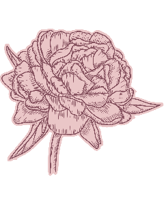 Crafter's Companion Nature's Garden Peony Collection Stamp and Die - Perfect Peony