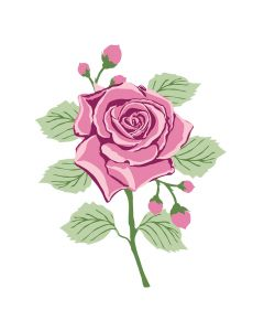 Crafter's Companion Photopolymer Stamp - English Rose